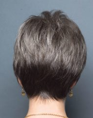Precious Wig Natural Image - image Ellen-Willie-ROP-Samy-190x243 on https://purewigs.com