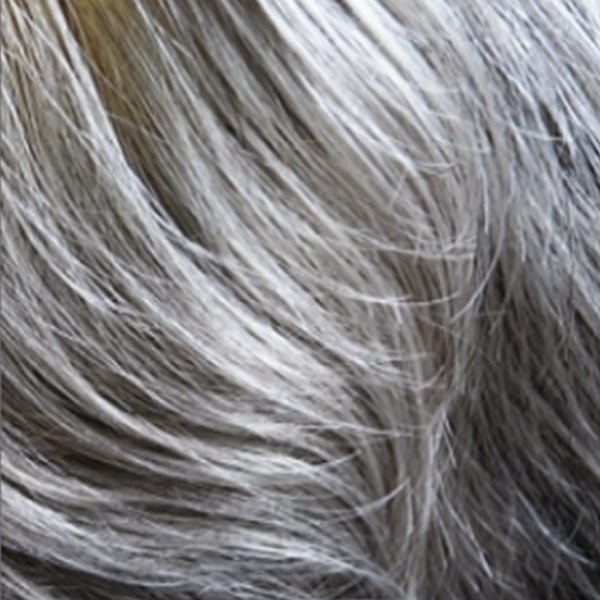 Beatrice Wig, Dimples Feather Premier Collection - image Silver-Thread-56G on https://purewigs.com